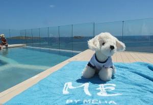 Hotel-ME-Ibiza_3-300x206