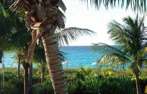 Club-Med-Columbus-Isle-Bahamas_clubreisen365_5-300x193