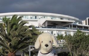 Mimo-im-Riu-Palace-Tenerife_6-300x188