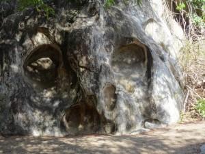 Mimo-auf-der-AIDAmar-in-der-Karibik12-300x225