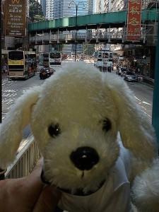 Mimo_Hongkong12-225x300