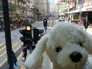 Mimo_Hongkong13-300x225