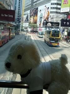 Mimo_Hongkong5-225x300