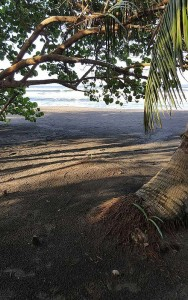 Seminarreise_Costa-Rica3-188x300