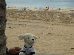 Mimo-im-Sotavento-Beach-Club8-300x225