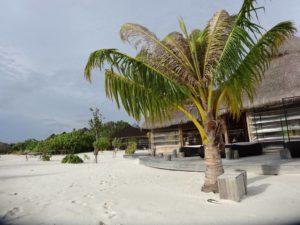 Mimo_Malediven1-300x225