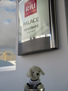 Mimo-im-Riu-Palace-Tenerife_11-225x300