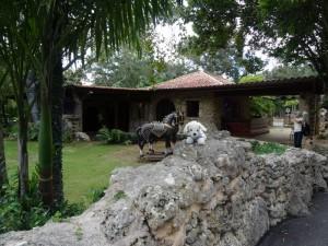 Mimo-auf-der-AIDAmar-in-der-Karibik26-300x225