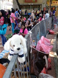 Mimo_Hongkong10-225x300