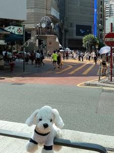 Mimo_Hongkong6-225x300