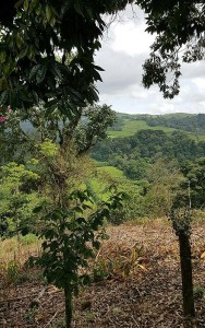 Seminarreise_Costa-Rica4-188x300