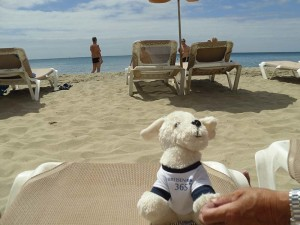 Mimo-im-Sotavento-Beach-Club7-300x225