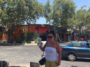 Mimo-im-Barrio-Bella-Vista-Viertel3_-300x225