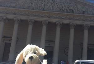 Mimo-vor-Catedral-Metropolitana-de-Buenos-Aires-300x206